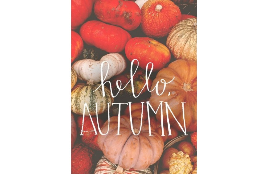 Hello Autumn !
